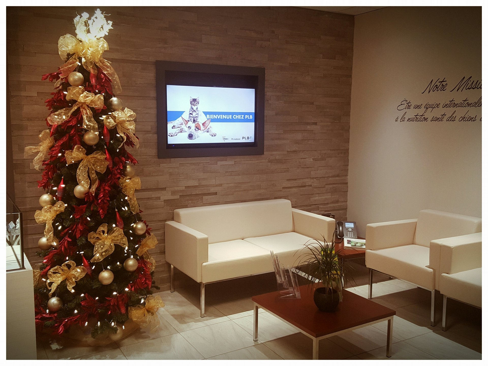 PLB International dives into the Holiday spirit!