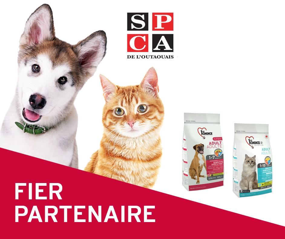 1st Choice devient le fournisseur officiel de nourriture de la SPCA de l'Outaouais