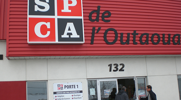 1st Choice becomes the official food supplier of the Outaouais SPCA